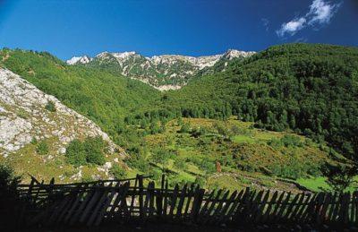 albania_004