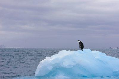 antarctica_014-2