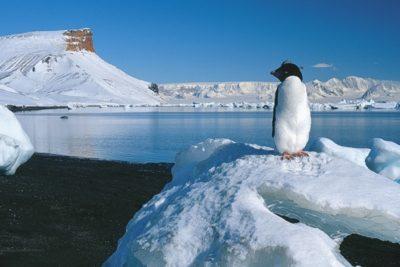 antarctica_014