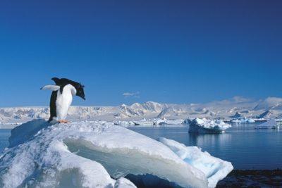 antarctica_017