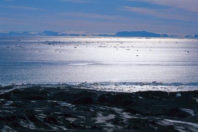 antarctica_041