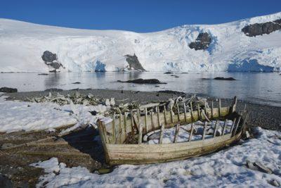antarctica_060
