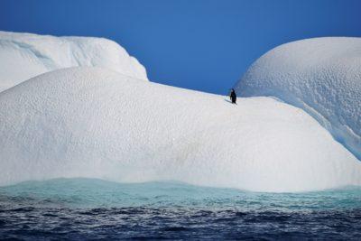 antarctica_073-2