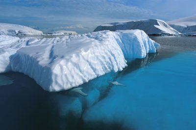 antarctica_088