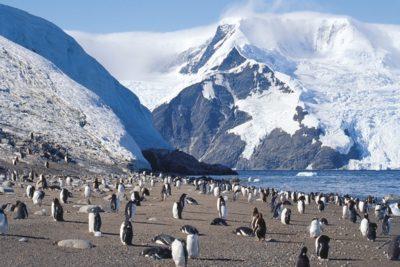 antarctica_096