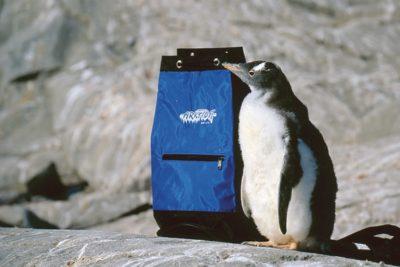 antarctica_122
