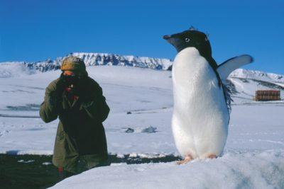 antarctica_251
