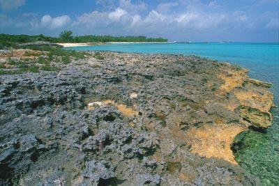 bahamas_041