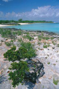 bahamas_058