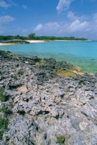 bahamas_059