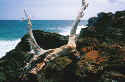 big_island_085