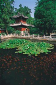 china_002