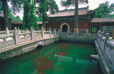 china_049