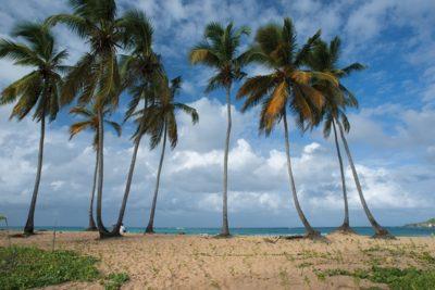 dominican_republic_088