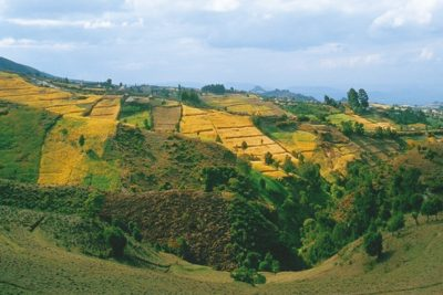 etiopie_366