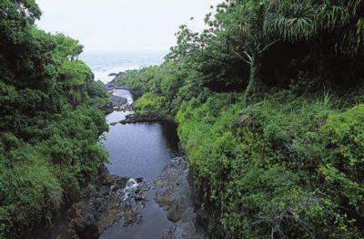 hawaii_maui_026