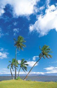 hawaii_molokai_021