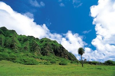 hawaii_oahu_030