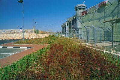 israel_013