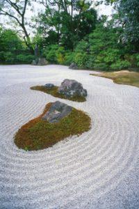 japan_218v