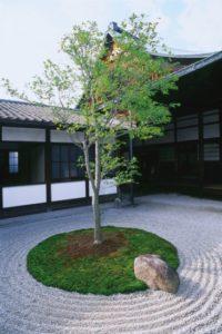 japan_219v