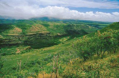 kauai_033