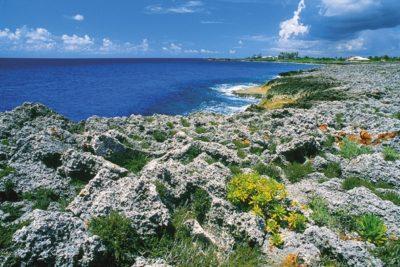 kayman_island_004