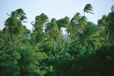 martinique_047