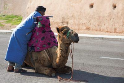 morocco_041