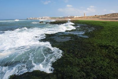 morocco_071