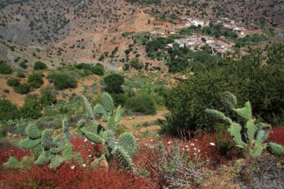 morocco_243