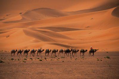 morocco_374