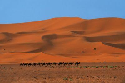 morocco_375