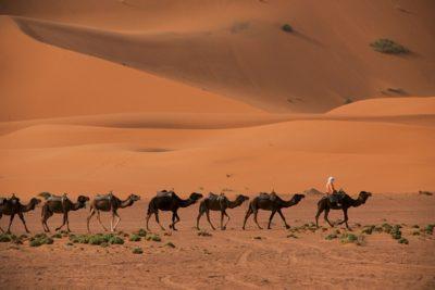 morocco_376