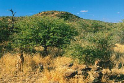 namibia_055