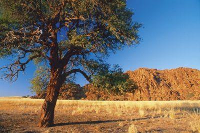 namibia_125