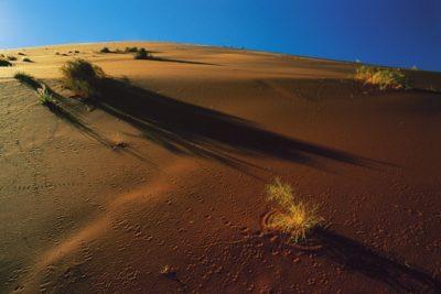namibia_135