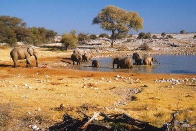 namibia_265