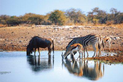namibia_268
