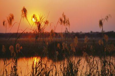 namibia_282