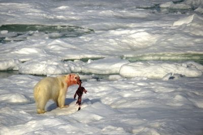 north_pole_011