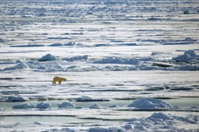 north_pole_065