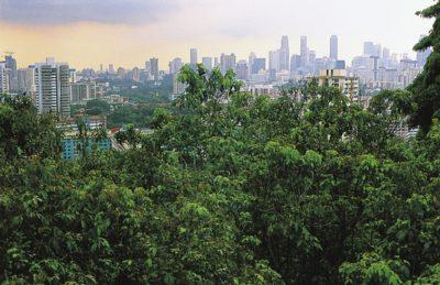 singapore_046