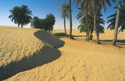 tunisia_093