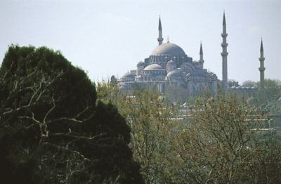 turkey_034