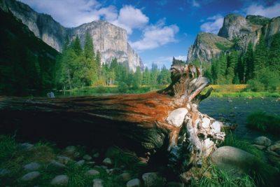 usa_california_123