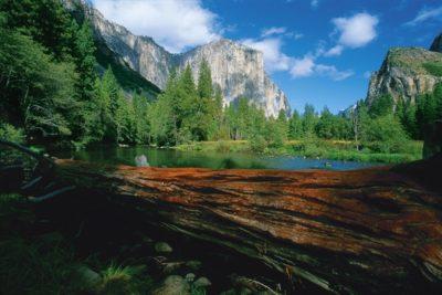 usa_california_124