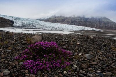 iceland_1240
