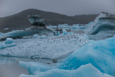 iceland_1248