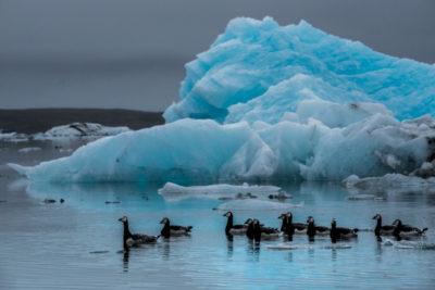 iceland_1251